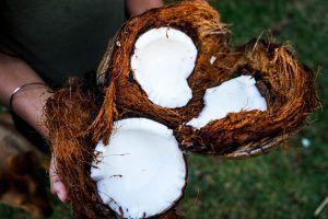 Cocos con aceite de coco para adelgazar