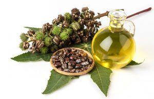 Aceite de ricino y aceite de coco para las arrugas