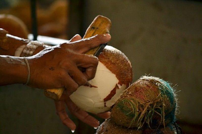 pelado del coco
